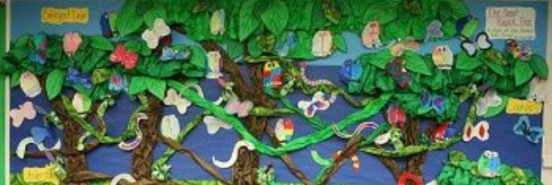 rainforest in the classroom